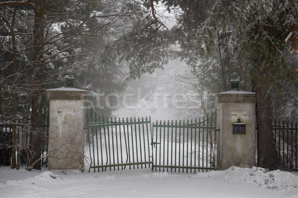 Old driveway gate in winter Stock photo © elenaphoto
