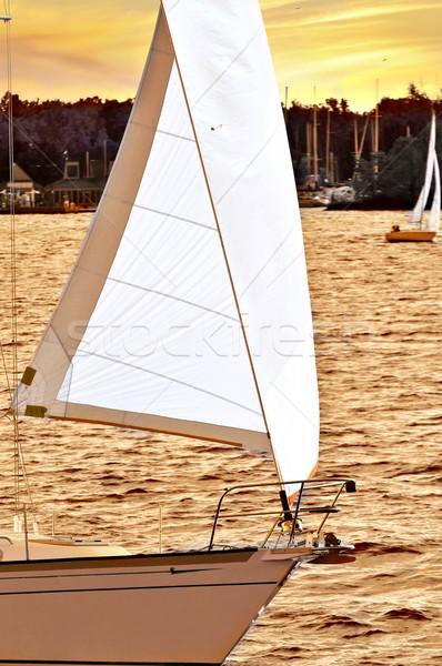 Sailboat at sunset Stock photo © elenaphoto