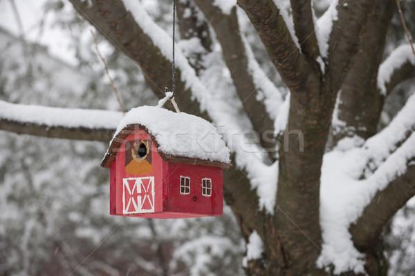 Bird house on tree in winter Stock photo © elenaphoto