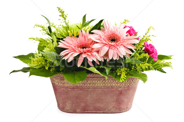 Isolated flower arrangement Stock photo © elenaphoto