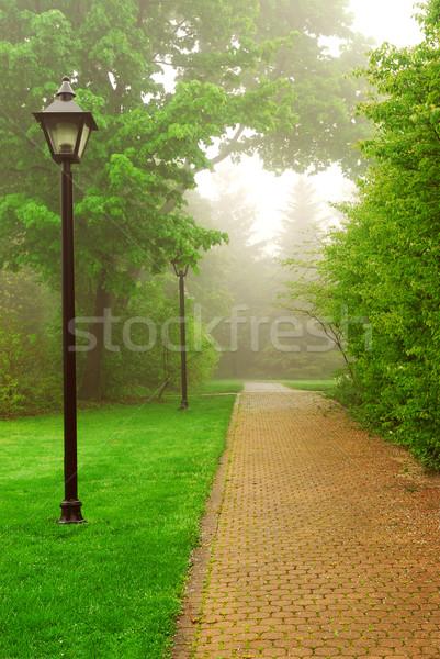 Stock photo: Foggy park