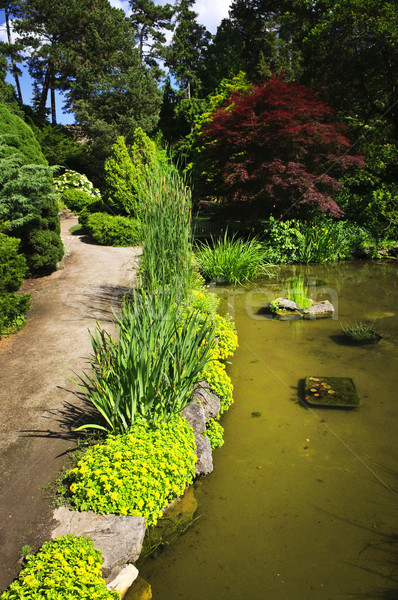 Stock photo: Landscaped garden path and pond