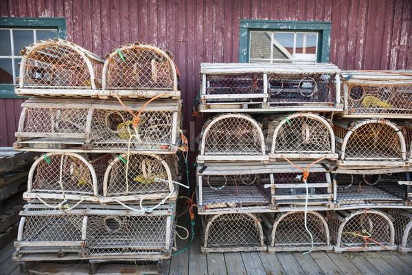 омаров север Остров Принца Эдуарда Канада древесины Сток-фото © elenaphoto
