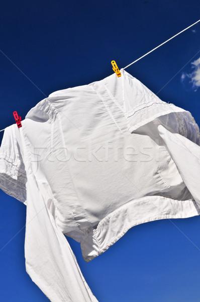 Fehér póló ruházat vonal akasztás száraz Stock fotó © elenaphoto