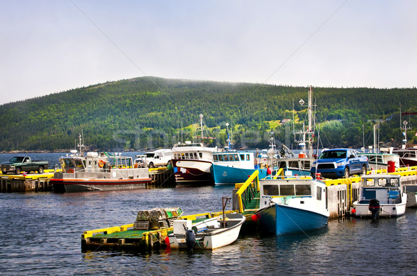 Fishing boats in Newfoundland Stock photo © elenaphoto