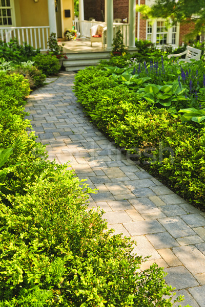 Stone path in landscaped home garden Stock photo © elenaphoto