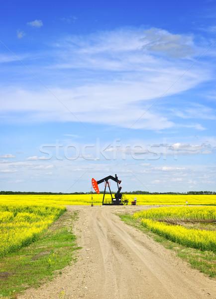 Nodding oil pump in prairies Stock photo © elenaphoto
