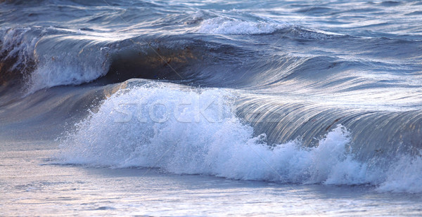 Wave in stormy ocean Stock photo © elenaphoto