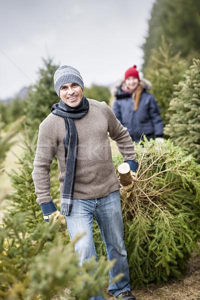 Family with Christmas tree on a farm Stock photo © elenaphoto