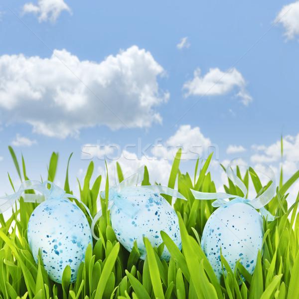 Easter eggs in green grass Stock photo © elenaphoto