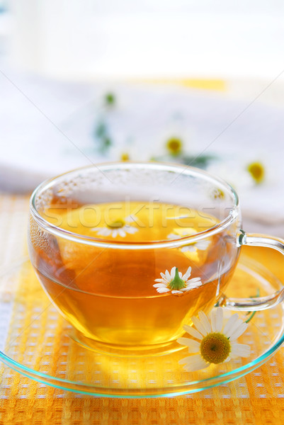 Camomile tea Stock photo © elenaphoto