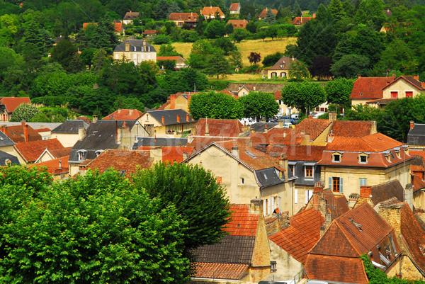 屋根 フランス 赤 中世 住宅 地域 ストックフォト © elenaphoto