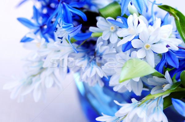 Foto stock: Primero · flores · de · primavera · azul · ramo · primer · plano · flor