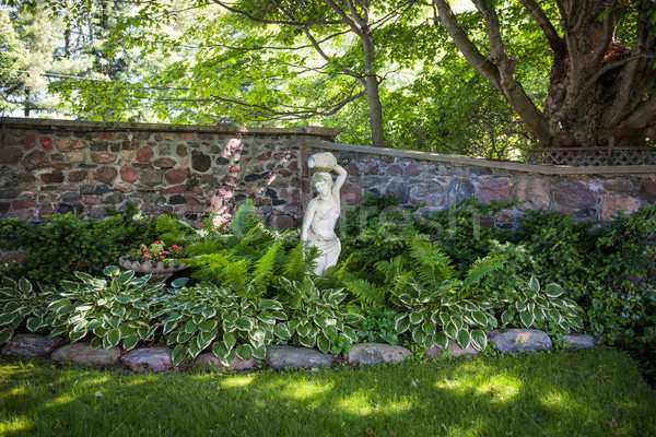 Shady perennial garden Stock photo © elenaphoto