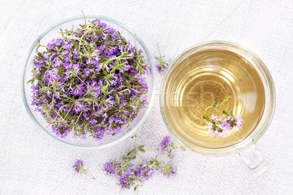 Fresh thyme tea Stock photo © elenaphoto