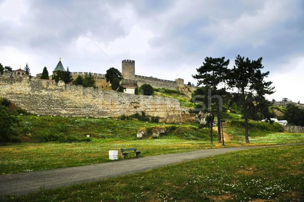 Forteresse Belgrade vert Voyage chemin Photo stock © elenaphoto