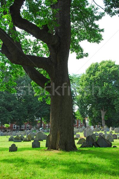 Old cemetery Stock photo © elenaphoto