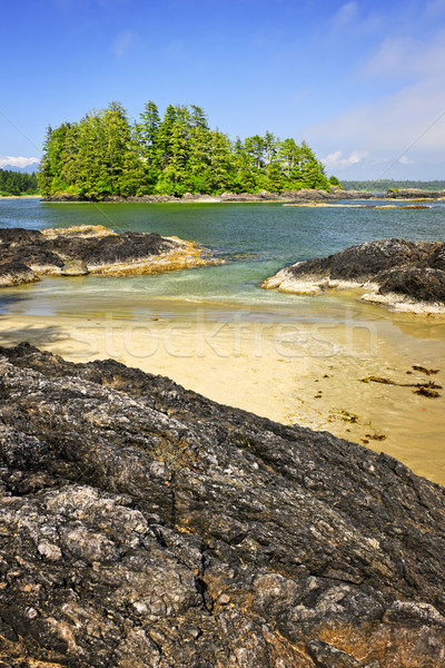 Costa oceano Vancouver ilha Canadá ver Foto stock © elenaphoto