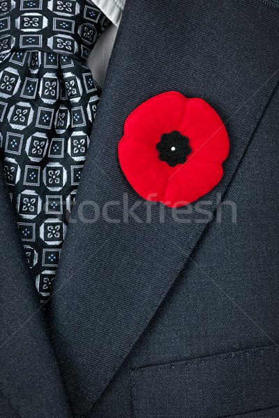 Remembrance Day poppy on suit Stock photo © elenaphoto