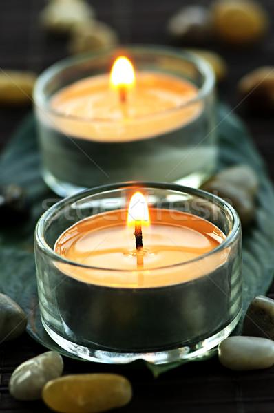 Zdjęcia stock: świece · palenie · szkła · zielony · liść · świetle · zielone