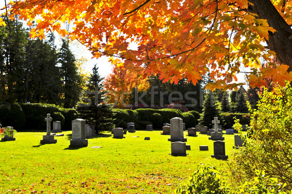 Graveyard with tombstones Stock photo © elenaphoto