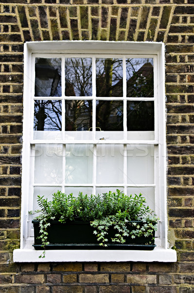 Window in London Stock photo © elenaphoto