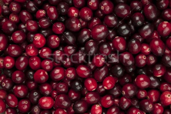 клюква многие свежие красный зрелый фон Сток-фото © elenaphoto