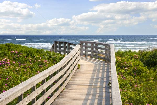 Walkway to ocean beach Stock photo © elenaphoto