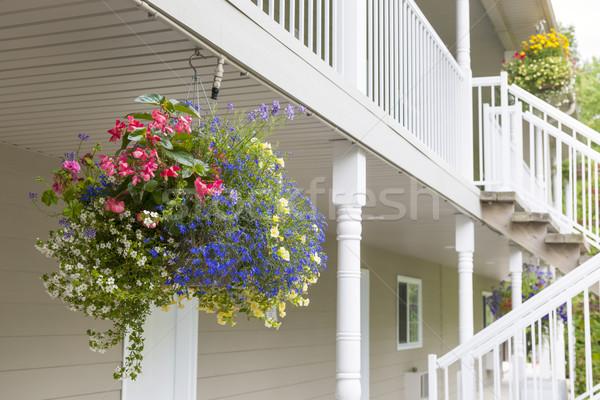 Suspendu fleur panier coloré extérieur de la maison espace de copie Photo stock © elenaphoto