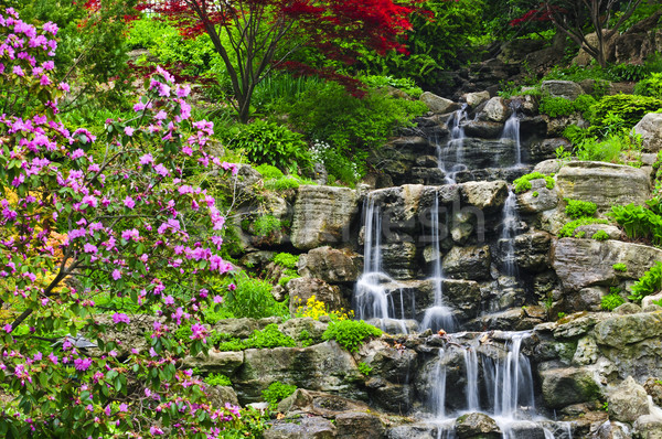 Cascade japonais jardin printemps eau arbre Photo stock © elenaphoto