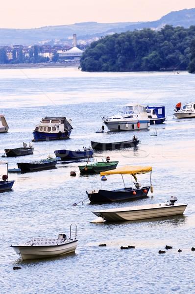 Rio barcos danúbio muitos pequeno pescaria Foto stock © elenaphoto