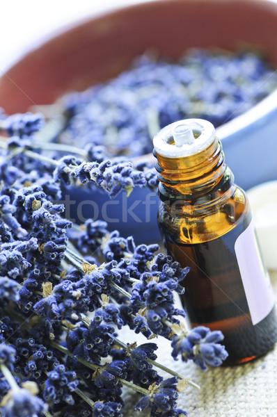 Levendula gyógynövény illóolaj aszalt alapvető aromaterápia Stock fotó © elenaphoto