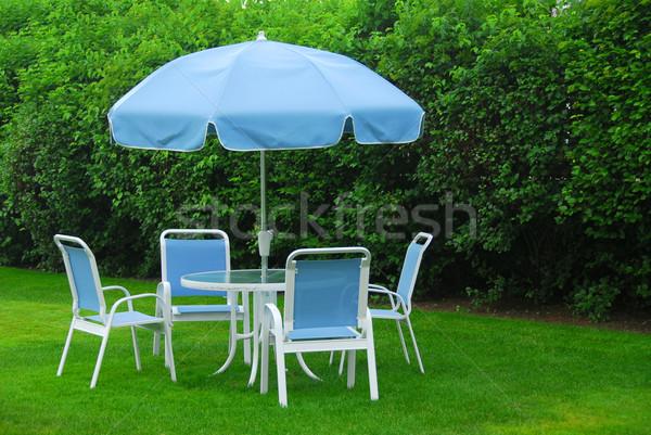 Kerti bútor gyep zöld otthon kert nyár Stock fotó © elenaphoto