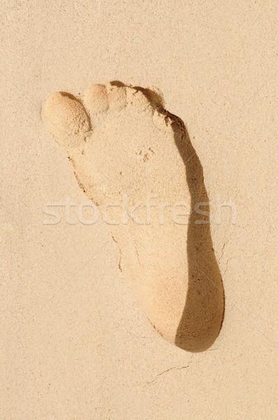 след песок природы тело Сток-фото © elenaphoto