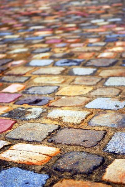 Colorful cobblestones Stock photo © elenaphoto