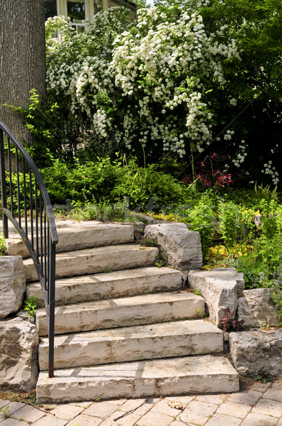 Natural stone steps Stock photo © elenaphoto