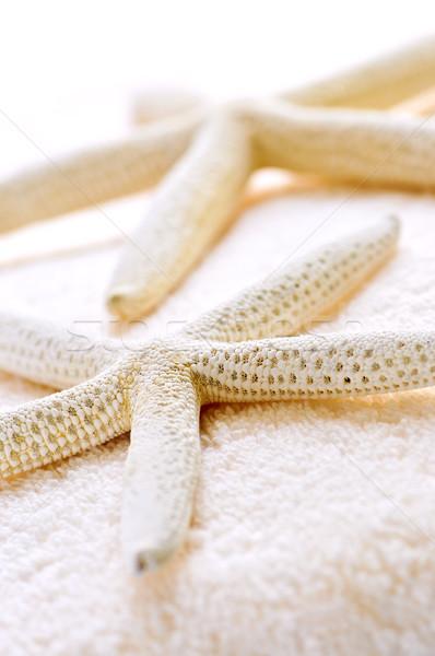 Starfish and towels Stock photo © elenaphoto