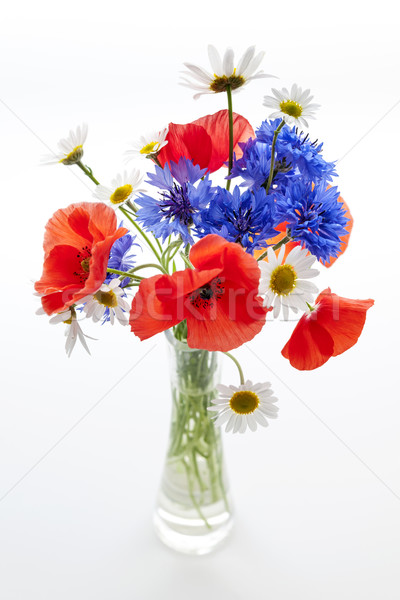 Wildflower bouquet Stock photo © elenaphoto