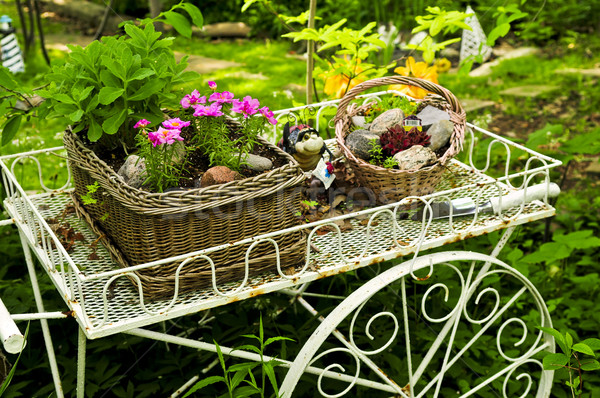 Flower cart in garden Stock photo © elenaphoto