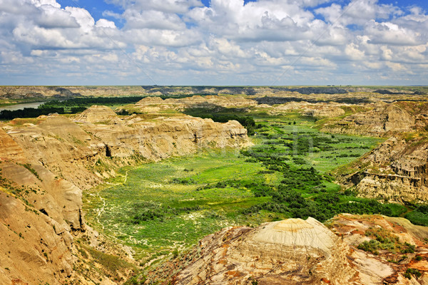 Badlands in Alberta, Canada Stock photo © elenaphoto