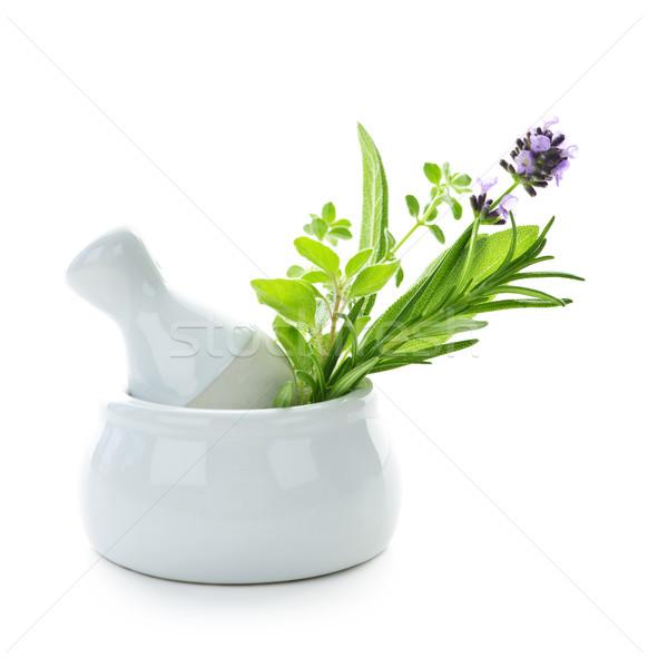 Healing herbs in mortar and pestle Stock photo © elenaphoto