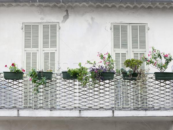 Francia erkély zsalu zárva ajtók virág Stock fotó © elenaphoto
