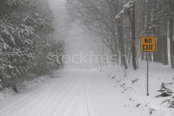 Stock photo: Winter road during snow storm