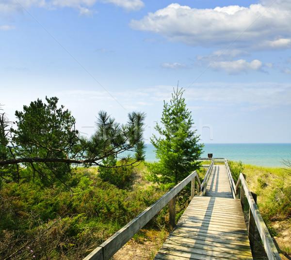 Wooden walkway over dunes at beach Stock photo © elenaphoto