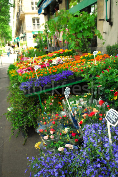 Flower stand in Paris Stock photo © elenaphoto