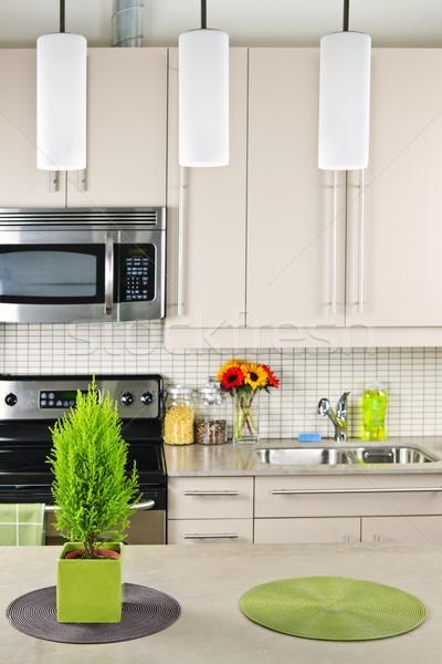 Keuken interieur moderne natuurlijke steen ontwerp home Stockfoto © elenaphoto