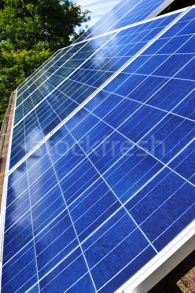 Solar panels Stock photo © elenaphoto