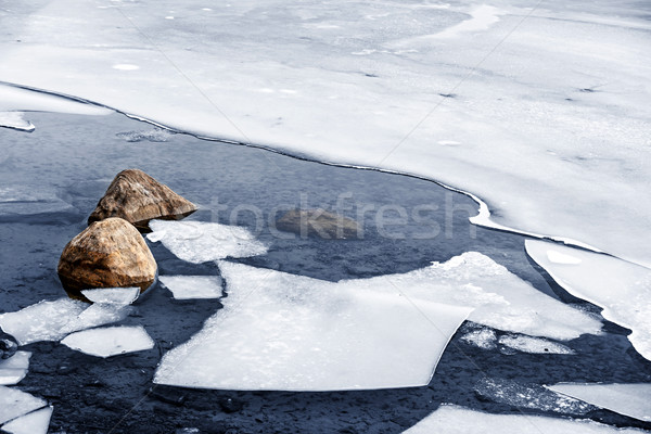 Icy shore in winter Stock photo © elenaphoto