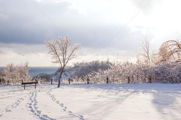 Сток-фото: зима · пейзаж · красивой · парка · Онтарио · Канада