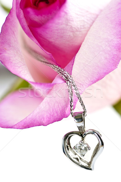 Diamond necklace on rose Stock photo © elenaphoto